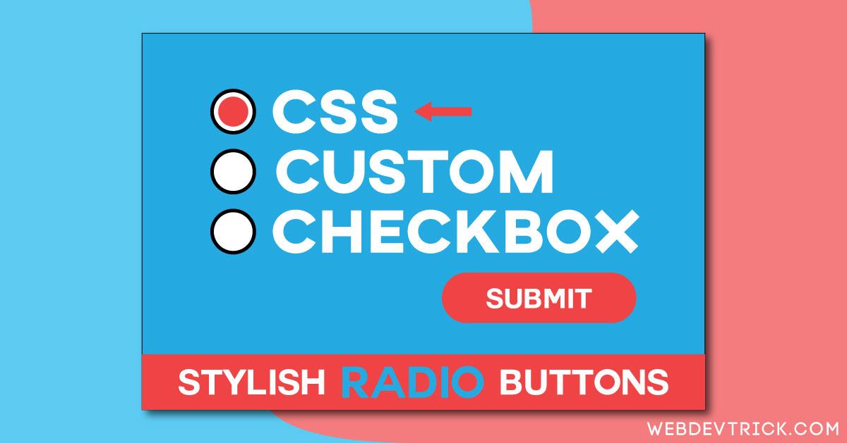 CSS Custom Checkbox And Radio Buttons   HTML Stylish Radio