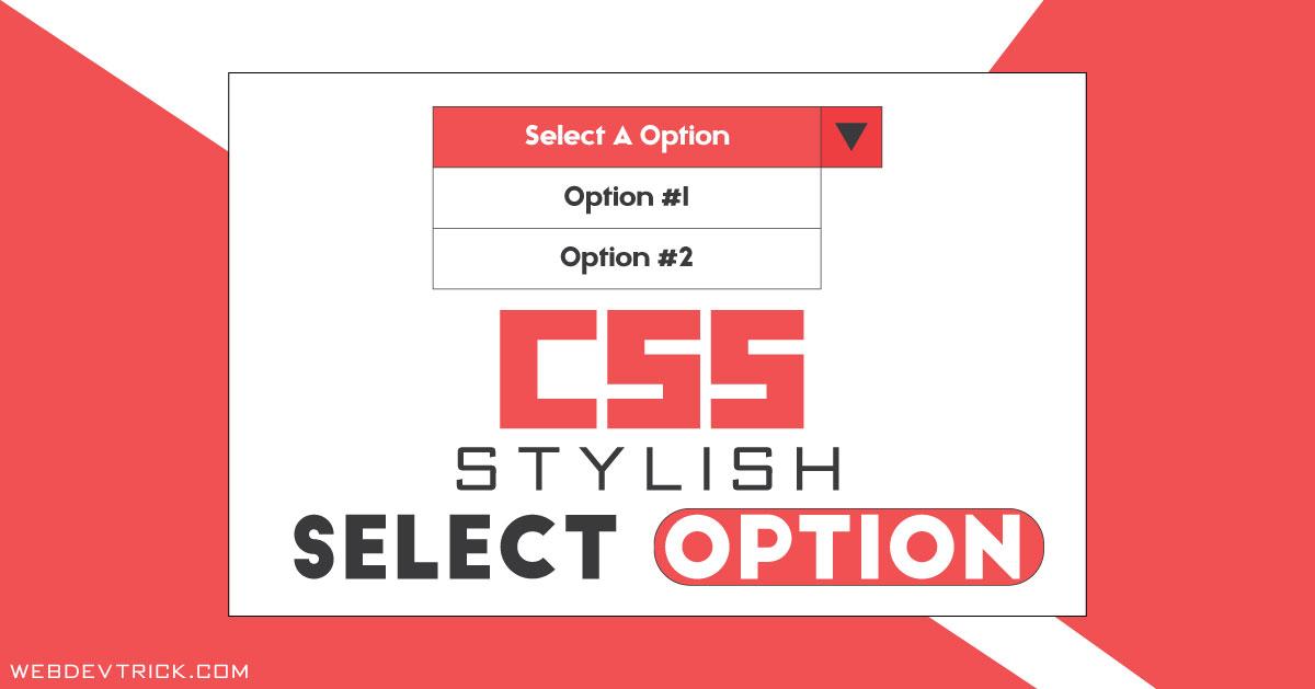 Custom HTML CSS Select Option | Stylish Dropdown Options